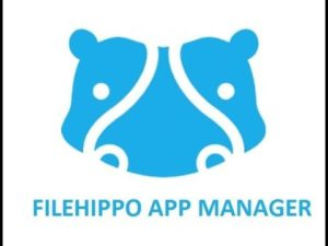 flash player download free filehippo